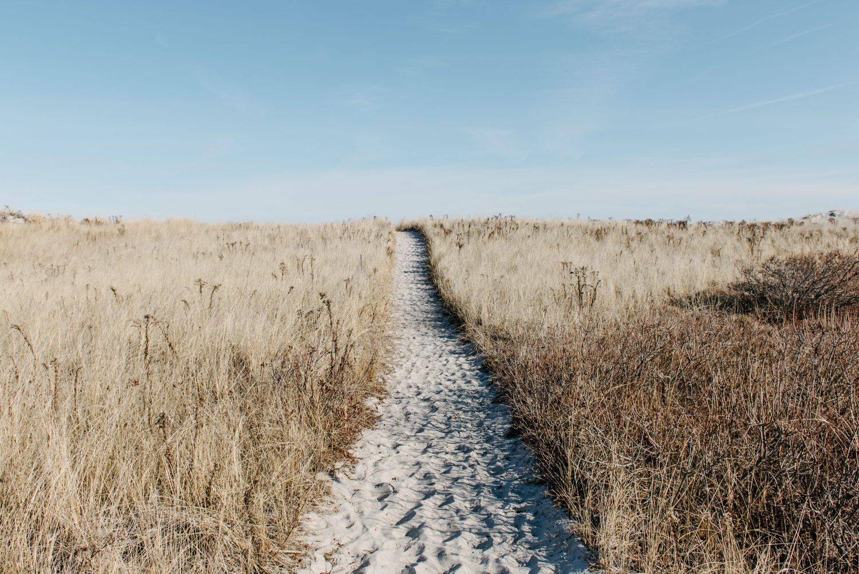 Pathway on the beach